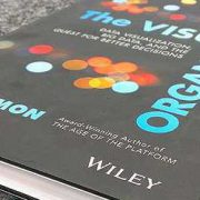 Buch cover Phil Simon Visual organizsation